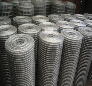 Welded Wire Mesh / Welded Wire Netting / Metal Wire Mesh pictures & photos