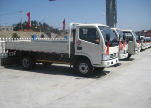 Dongfeng Light Truck (EQ1033)