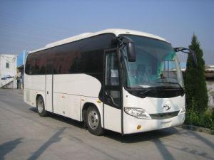Coach /Bus Xqx6920d3y (9.2m)