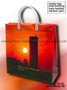Shopping Carrier Bag with Handle pictures & photos