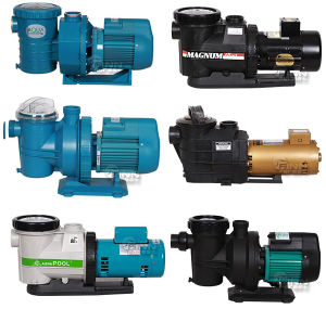 2017 Used Swimming Pool Hayward Water Pump Sale pictures & photos