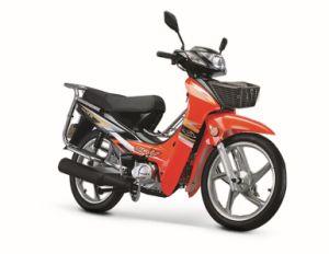 Motorcycle (BRG110-9)