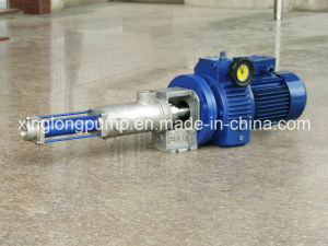 Xinglong Micro Metering Single Screw Pump pictures & photos