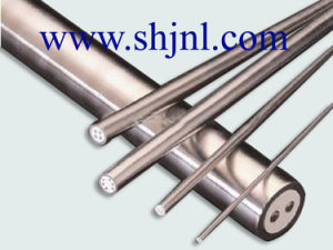 Thermocouple Mineral Insulated Cable pictures & photos