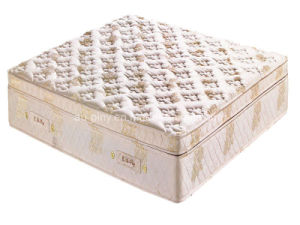 Convoluted Foam Mattress (L6809)