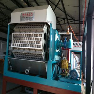 Paper Egg Tray Machine 4*8