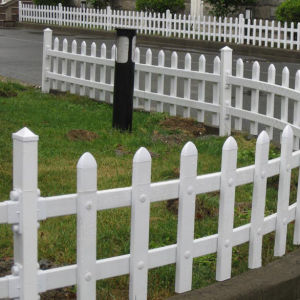 Made in China Plastic Fencing pictures & photos