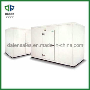 High Efficiency Cold Storage Room for Meat pictures & photos