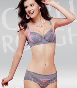 Charming Lady Bra Lingerie Set/Lovely Lave Bra & Underwear Set (82221)