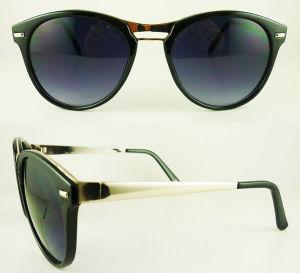 Fashionable Sunglasses (C26008)