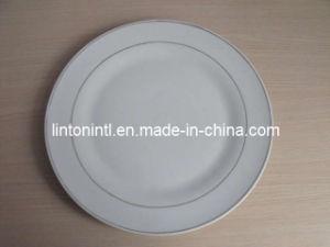 "10.5"" Porcelain Flat Plate - 2"
