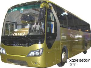Coach / Bus Xqx6120d3y (12m)