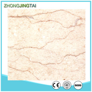 Polished Surface Shell Beige Marble Quartz Stone Tile pictures & photos