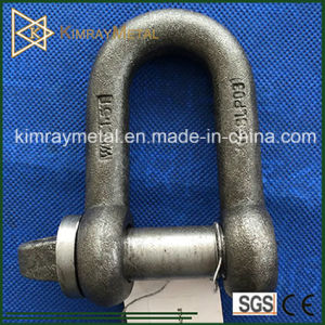 Cold Forging Steel BS3032 Large Dee Shackle pictures & photos