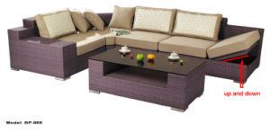 Professional Outdoor Leisure PE Rattan Furniture pictures & photos