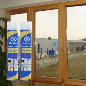 Chemicals Polyurethane Foam PU Foam (Kastar 222) pictures & photos