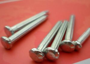 Hot Selling Good Quality Proper Price Galvanized Concrete Nails pictures & photos