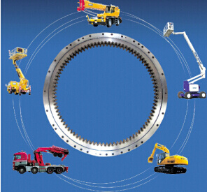 Conveyer, Crane, Excavator, Construction Machinery Bearing pictures & photos