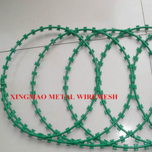 PVC Coated Concertina Razor Blade Wiremesh (XM-R2) pictures & photos