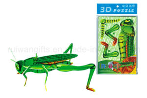 Wholesale Educational Toy Insect 3D Puzzle for Kids Toy. pictures & photos