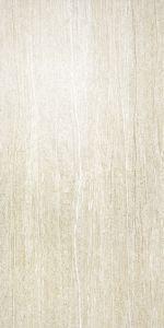 450X900mm Porcelain Ceramic Rustic Floor Tile (AK45903) pictures & photos