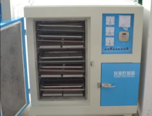 Automatic Control Far-Infrared Electrode Oven (ZYHC-100) pictures & photos