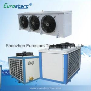 Bitzer Compressor Cold Room Machine (ESBA-25NJTBY) pictures & photos
