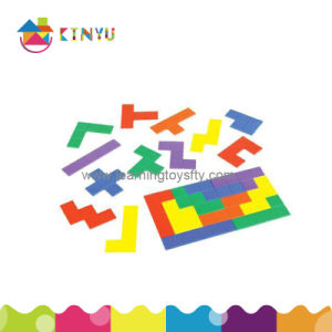 Plastic Puzzles, Plastic Pentominoes (K065) pictures & photos