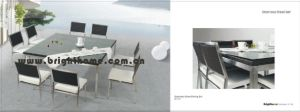 Stainless Steel Wicker Outdoor Dining Set Bp-321 pictures & photos
