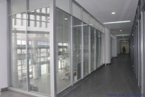 Glass Aluminum/Aluminum Office Partition Walls pictures & photos
