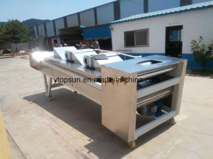 Powder Coating Processing Cooling Band pictures & photos