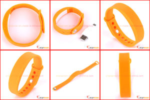 Wristband Calories Pedometer, Bracelet Pedometer Calorie Counter pictures & photos
