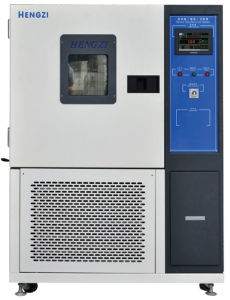 Since 1974, Famous Brand-High/Low Temperature Experimental Oven (GDJSX-120C)