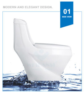 Weidansi Ceramic Wash Down S-Trap One Piece Toilet (WDS-T6114) pictures & photos