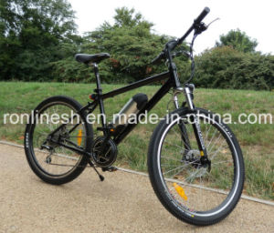 MID Amounted/Center Motor/Chain Drive 250W Electric Bike/Bicycle/E Bike/Pedelec W CE, En15194 pictures & photos
