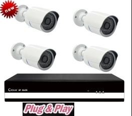 Waterproof 4CH P2p NVR Kits CCTV NVR