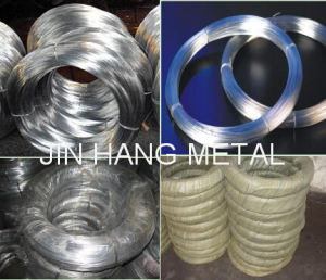 Electro Galvanized Steel Iron Wire