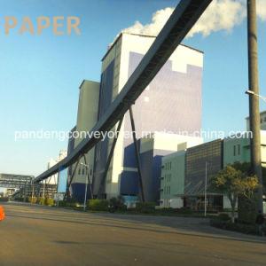 Long Distance Plan Bend Belt Conveyor/ Curved Belt Coneyor Application in Paper Industries pictures & photos