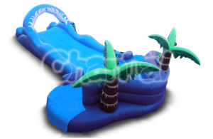 Tropical Slip and Splash Inflatable Water Slide Inf011 pictures & photos