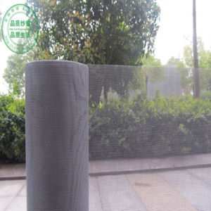 Anti-Insect Fiberglass Mesh of 16X16, 16X18mesh pictures & photos