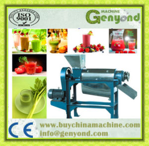 Fruit and Vegetable Spiral Juice Extractor pictures & photos