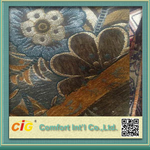 New Design High Quality Chenille Fabric pictures & photos