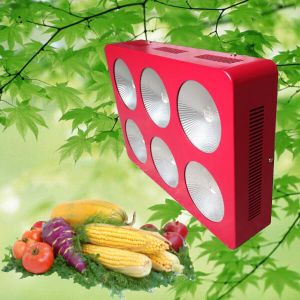 6 Band 430W COB LED Grow Light for Garden Greenhouse pictures & photos
