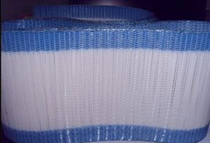 Polyester Spiral Conveyor Belt Mesh pictures & photos