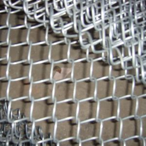 Galvanized Chain Link Fence (diamond wire mesh) , PVC Coated Chain Link Fence pictures & photos