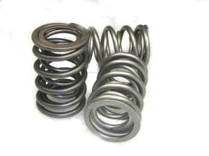 Dual Valve Springs for Auto Engine pictures & photos