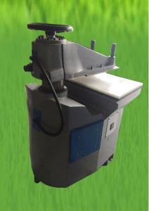 PVC/TPR Plastic / Leather Cutting Machine Shoe Making Machine (GSB-2C/20) pictures & photos