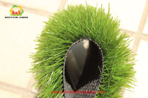 Artificial Grass and Grass Carpet and Indoor Soccer Field Artificial Turf