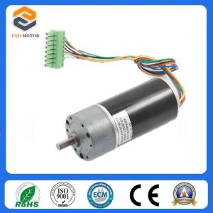 Brushless Electric Motors with Driver Inside (FXD57BL-1220-001) pictures & photos