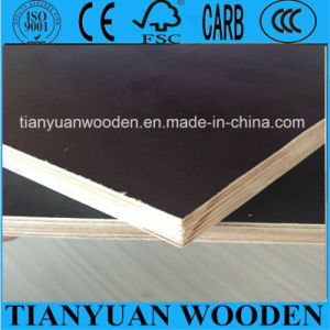 Wholesale Concrete Formwork 18mm Marine Plywood pictures & photos